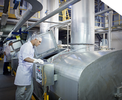 Man working in food processing plant